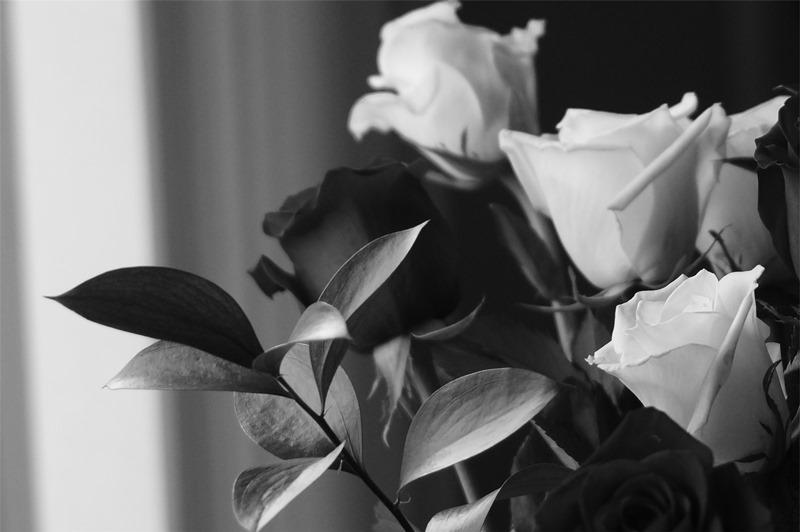 flori - recunostinta