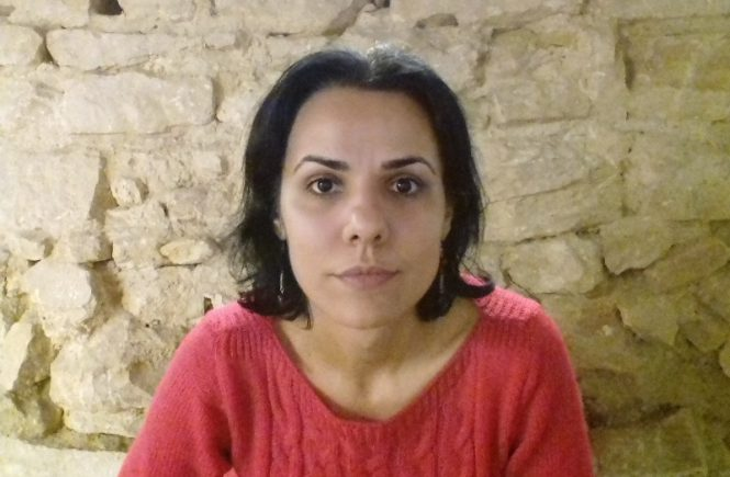 pusa la zid - Anda Elena Pintilie